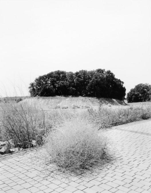 jurgen-nefzger27_françoise-paviot