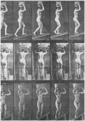 Eadweard Muybridge 1830-1904