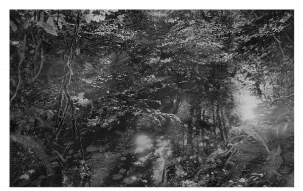 aki-lumi3_françoise-paviot