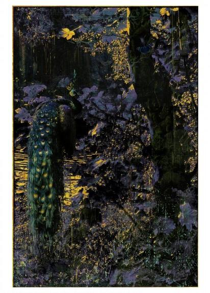 aki-lumi7_françoise-paviot
