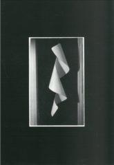 Photographie et sculptures